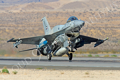 F-16E 00031 Lockheed Martin F-16E Desert Falcon United Arab Emirates Air Force UAEAF Nellis AFB by Peter J Mancus