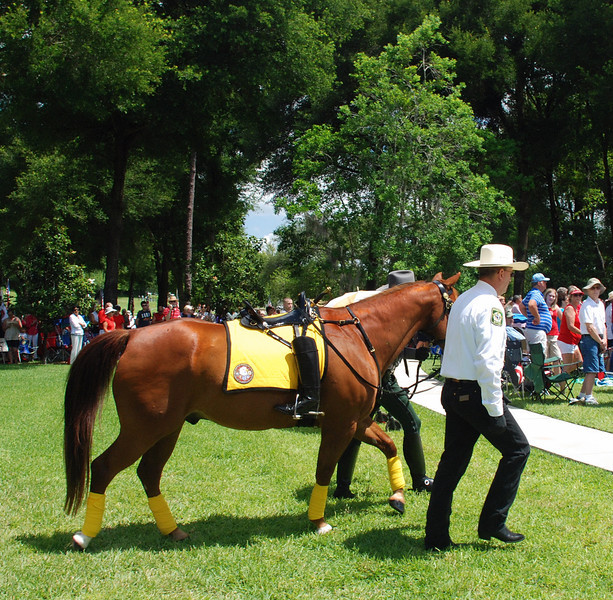 Deputy John Bushnell of the Pasco County Sheriff Dept. Leads the Riderless Horse.