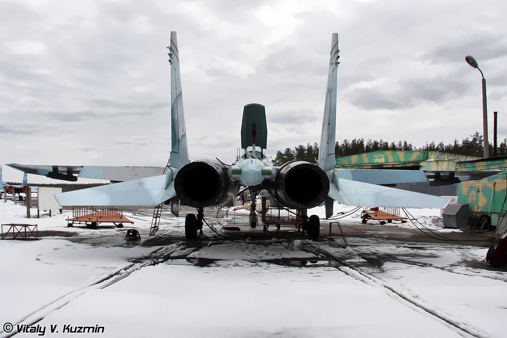 """Тот самый Су-27УБ бортовой номер 20, который 20 марта 2008 г. из-за отказа систем и оборудования совершил аварийную посадку без выпущенного шасси """"на брюхо"""" на аэродроме Дорохово с минимальными повреждениями. Сейчас, как видно, полностью восстановлен. (That Su-27UB 20 Red had a crash landing on March 20-th 2008, due to the technical problems. Pilots made an emergency landing on Dorokhovo airbase runway after landing gear malfunctioned)"""