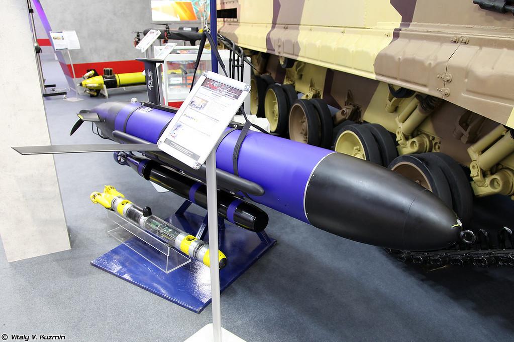 Роботизированный комплекс с АНПА-планерами Морская тень (Morskaya ten'  unmanned underwater vehicle system)