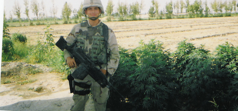 2003 - Fairly tall marijuana crop behind a house