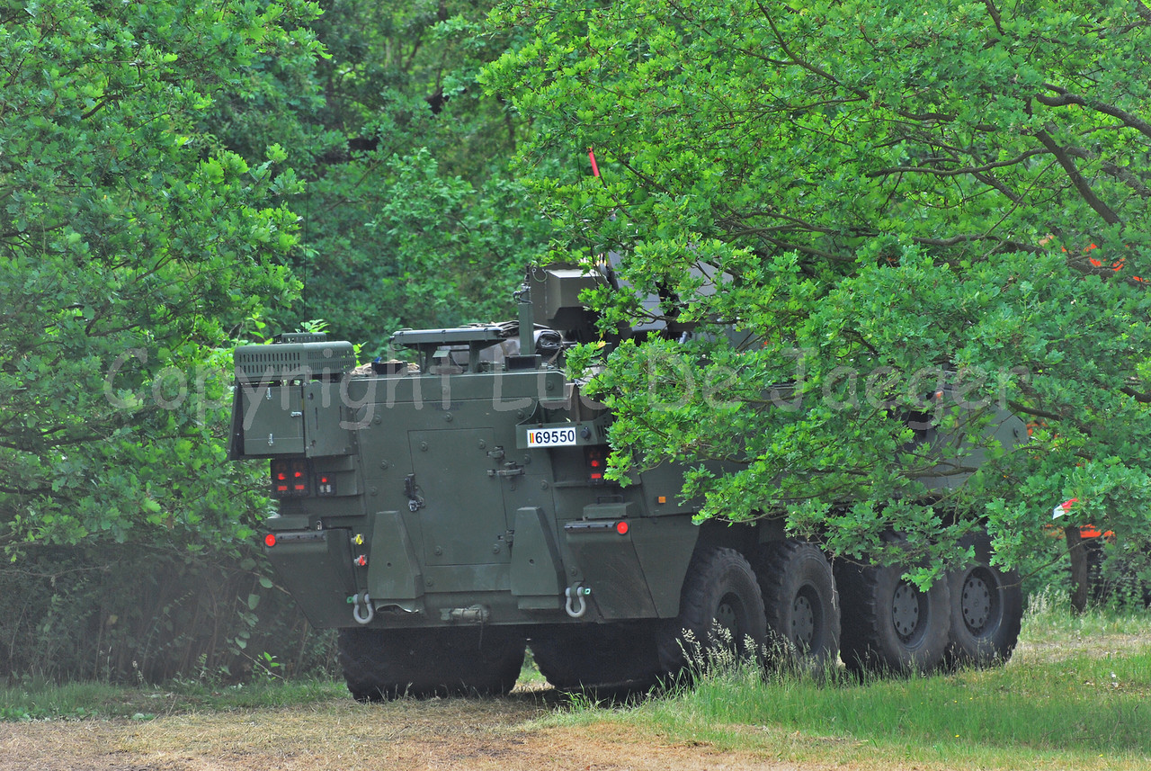 A Piranha IIIC of the Belgian army, hidden in the bushes.