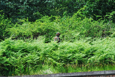 A paratrooper proceeding in the bushes.