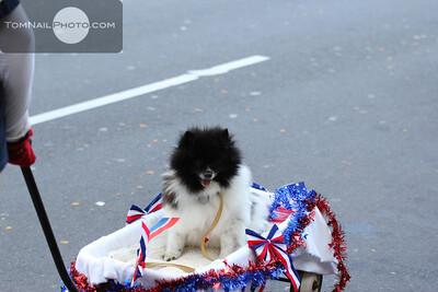 veterans parade 041