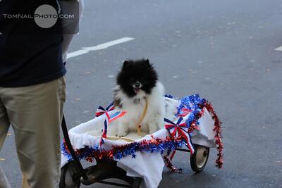 veterans parade 040