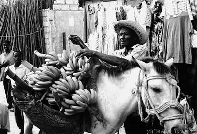 Haiti #4 (c) David A  Tucker II 1994