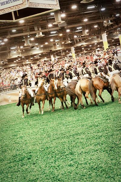 1st Cavalry Horse Detachment