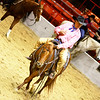 Armed Forces Appreciation Day at the Houston Livestock Show & Rodeo, calf cutting