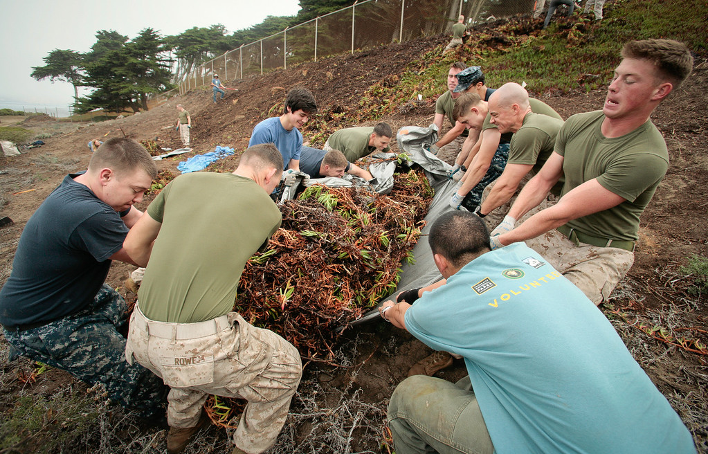 Navy and Marines join with volunteers to remove Ice Plant at Baker Beach in San Francisco, Calif., on Saturday, October 8, 2011.