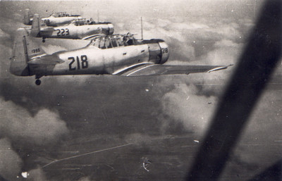wing escort