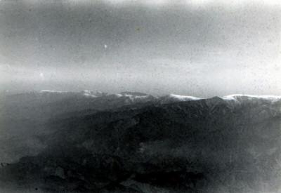 9wing panorama