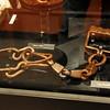 Slave leg shackle