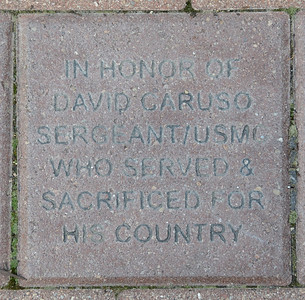 Fredenhagen Memorial Bricks - David Caruso