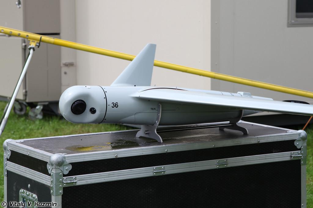 БПЛА Иркут-10 (Irkut-10)