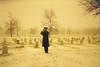 A snowy day in Arlington