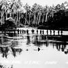 WW-II Photo - Guadalcanal Island