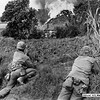 WW-II Photo - Roi-Namur Island