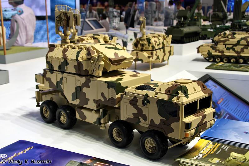 ЗРК в модульном исполнении Тор-М2КМ на различных шасси (Tor-M2KM in module version on different chassis)