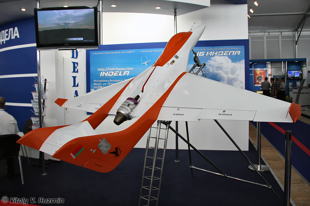 БПЛА Беркут (Berkut UAV)