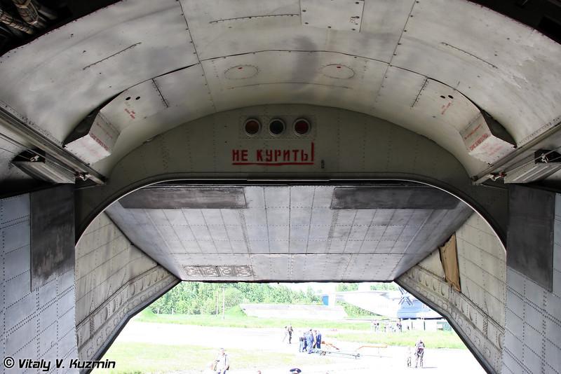 Ан-12 б/н RA-11803 (An-12 RA-11803 Black)