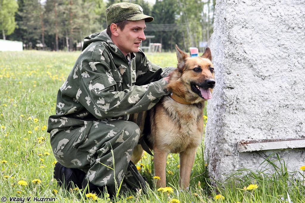 Military or poli470-й методико-кинологический центр служебного собаководства ВС РФ (470th Methodology-сynology centre of military dog breeding)ce photo