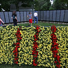 The Moving Wall Vietnam Veterans Memorial is set up on Wilmington Common. The flowers arrangement represents the Vietnam ribbon, based on the Vietnamese flag. (SUN/Julia Malakie)