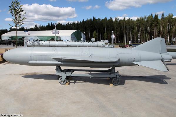mísseis anti-navio P-15 Termit [anti-ship missile P-15 Termit)