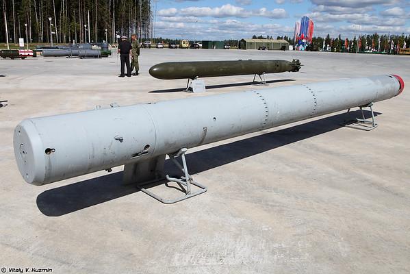 Anti-submarino minas TMR-2 foguete [PMR-2 anti-míssil submarino)