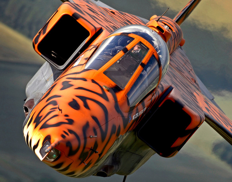 A specially painted Jaguar aircraft takes to the skies over RAF Coningsby for a final flight before the fighter was officially retired from service with the Royal Air Force in June 2007.