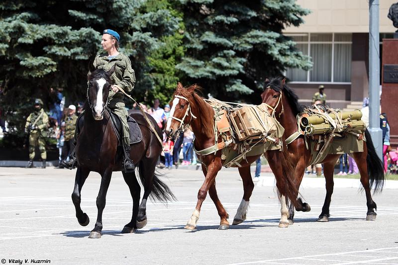 Выступление вьючно-транспортного взвода (Demonstration of pack transportation platoon)