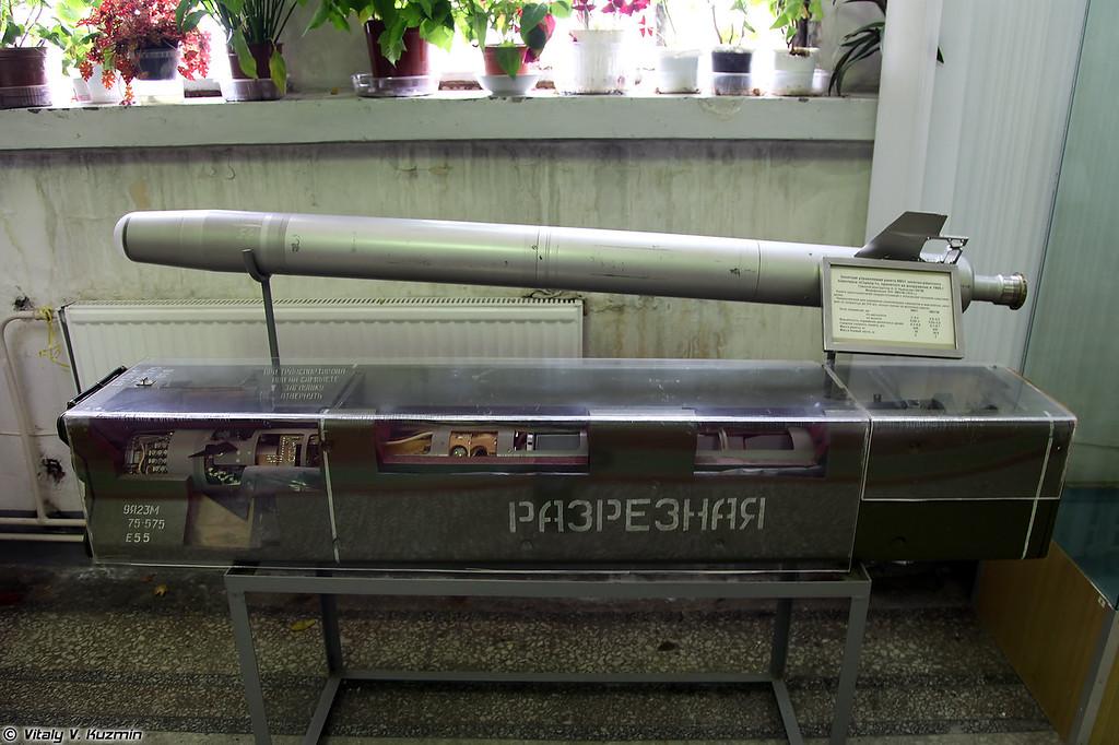 ЗУР 9М31 ЗРК 9К31 Стрела-1 (9M31 SAM for 9K31 Strela-1 system)