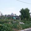 gardens adjacent to the rail line