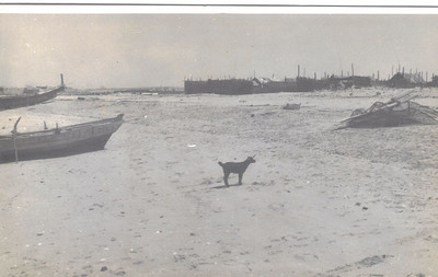 35 View of village on shoreline Sharjah