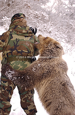 Tamed_baby_Baby_Bear_Cub_DSC_0212