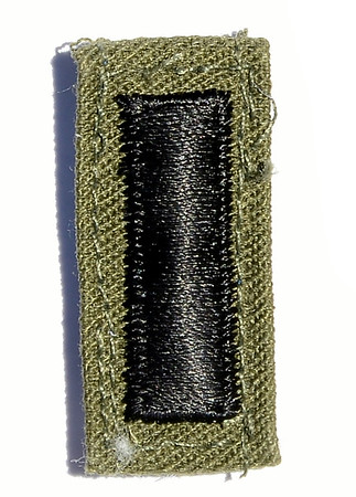 VFW Post 3873 - Panel 01 - Patch 02 - Army 1st Lieutenant Rank Insignia; BDU