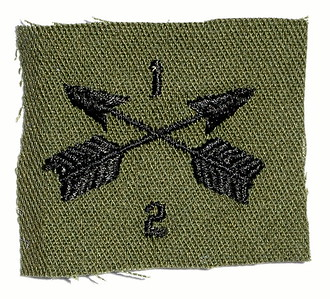 VFW Post 3873 - Panel 01 - Patch 06 - 2nd Battalion 1st Special Forces Group Insignia