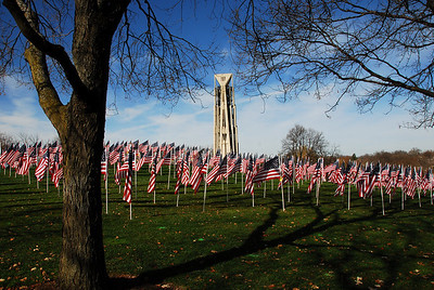 Veterans Day - Naperville, Illinois - Healing Fields - 2009