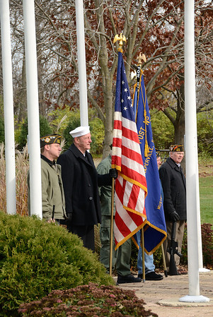 Veterans Day 2011 - Naperville, Illinois