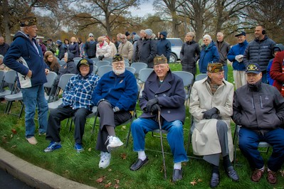 Veterans Day Ceremony at Veterans Park - Naperville, Illinois - November 11, 2017