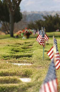 The graves of veterans are marked with American flags in Palmdale, Calif., during a Veterans Day ceremony at Desert Lawn Memorial Park.