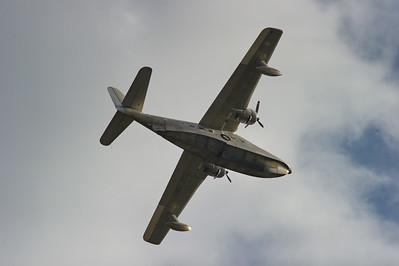 Albatross_RAW2611