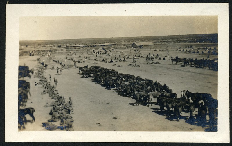 Lynchburg Home Guard in Camp With Horses II (06280)