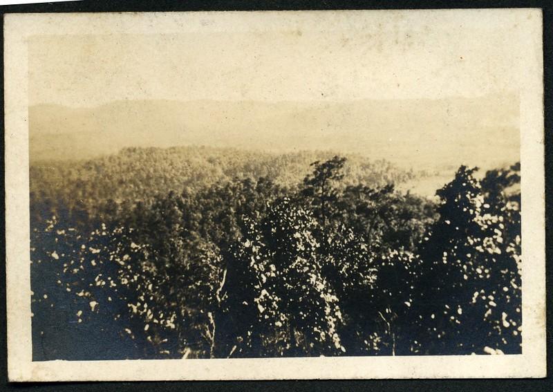 Lynchburg Home Guard Camp McClellan, Alabama Landscape VII (06291