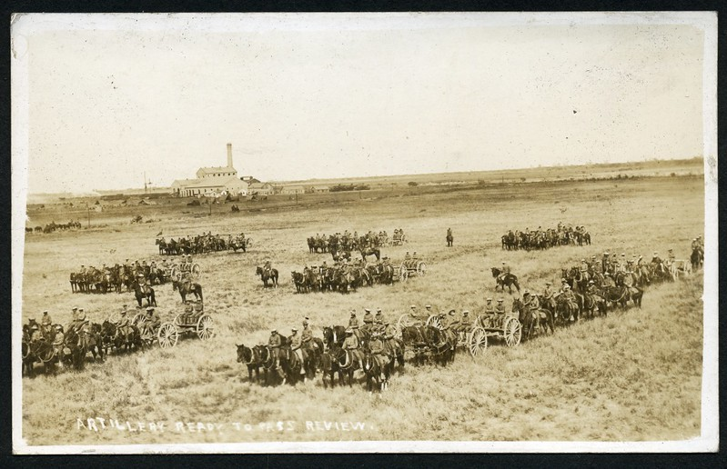 Artillery Ready to Pass in Review (06204)