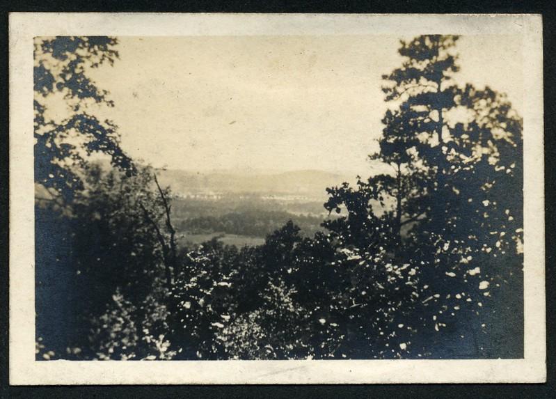 Lynchburg Home Guard Camp McClellan, Alabama Landscape III (06287)