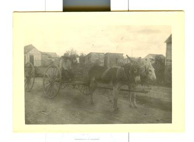 Man traveling by Wagon Near the Mexican Border (03228)