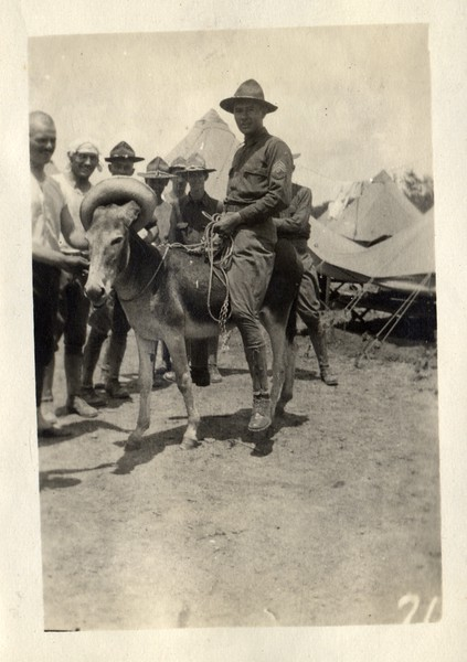 Lynchburg Musketeer Riding a Donkey (03385)