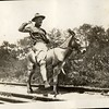 Lynchburg Musketeer Riding a Mule (03386)