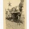 Man on Cart Near the Mexican Border (03198)