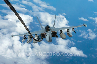 Royal Australian Air Force EA-18G - A46-310 -